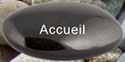 ro_accueil_1.png